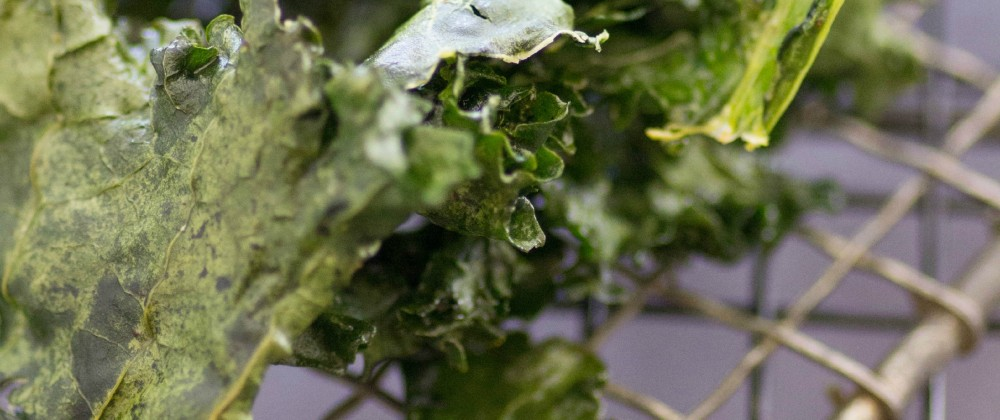 kale chips recipe using massel